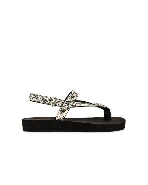 Сандалии Newport В Цвете Змеиный Серый Giuseppe Zanotti, цвет: Black