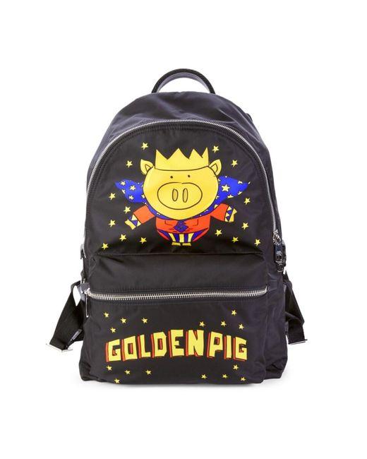 Dolce & Gabbana Black Golden Pig Nylon Backpack