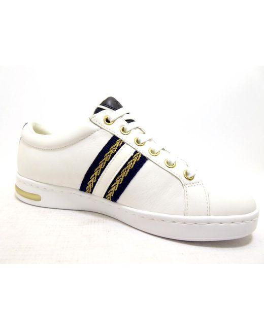 Geox Multicolor Sneaker