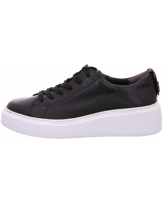 Paul Green Black Sneaker
