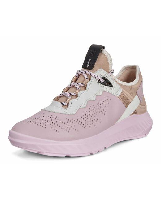 Ecco Pink Sneaker