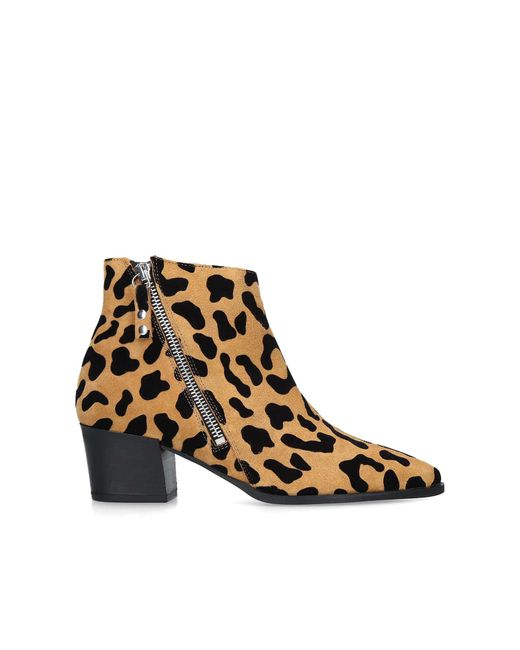 huge sale how to buy differently Carvela Kurt Geiger Suede Sacriledge Leopard Print Ankle Boots in ...