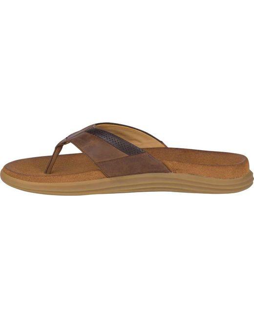 aedd20c79b46 ... Lyst Sperry Top-Sider - Brown Women s Angelfish Boat Shoe for Men ...