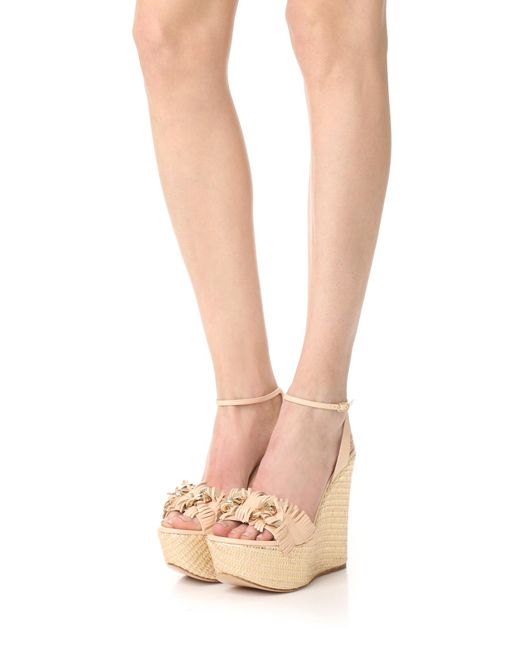casadei jeweled wedge sandals in multicolor lyst