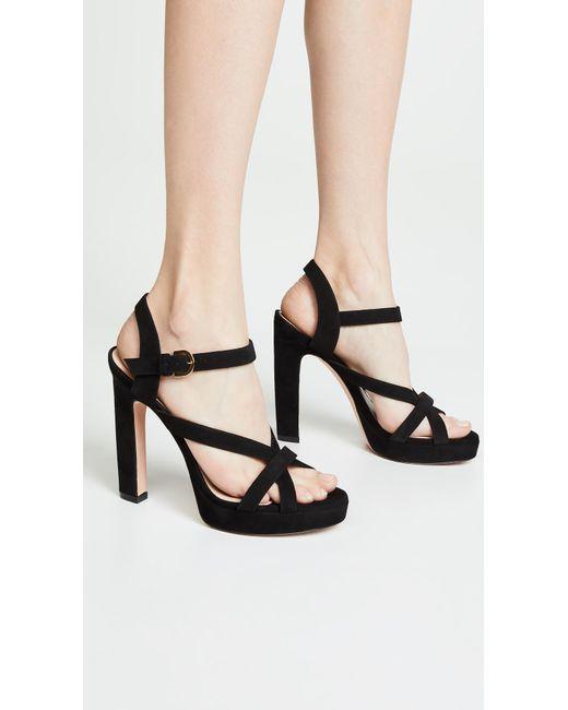 1afa16141b4 ... Stuart Weitzman - Black Cersei Platform Sandals - Lyst ...