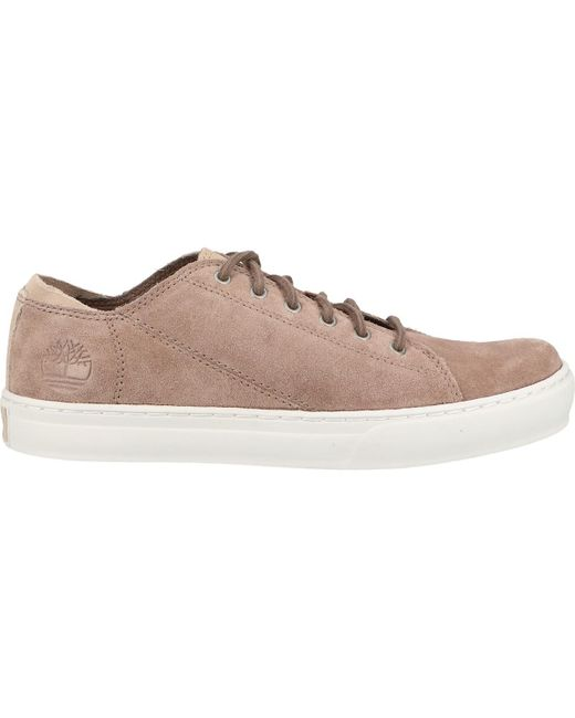 timberland homme chaussure sneaker