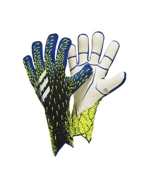Adidas Handschoenen in het Multicolor