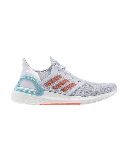 Adidas Hardloopschoenen in het Gray