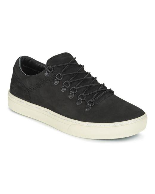 Timberland Lage Sneakers Adv 2.0 Cupsole Alpine Ox in het Black voor heren