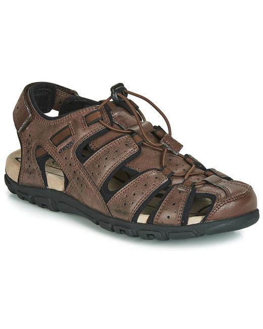 Geox Sandals for Men Geox Footwear | YOOX