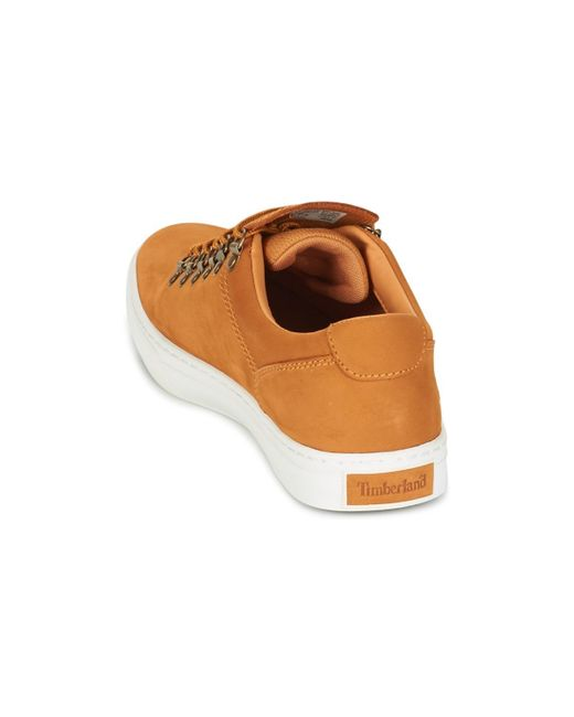 ADV 2.0 CUPSOLE ALPINE OX Chaussures Timberland pour homme en coloris Brown