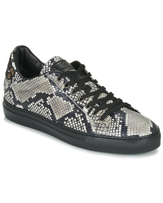 Roberto Cavalli Black 8309 Shoes (trainers) for men