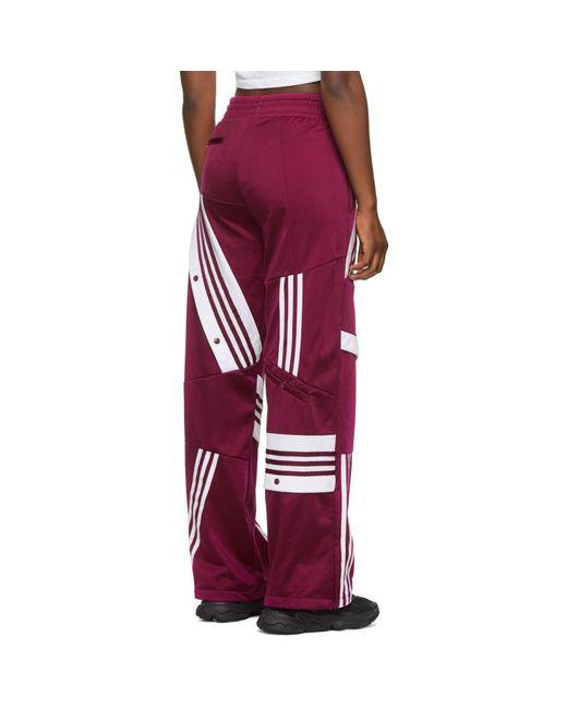 Adidas Originals Danielle Cathari Edition パープル Tp ラウンジ パンツ Red
