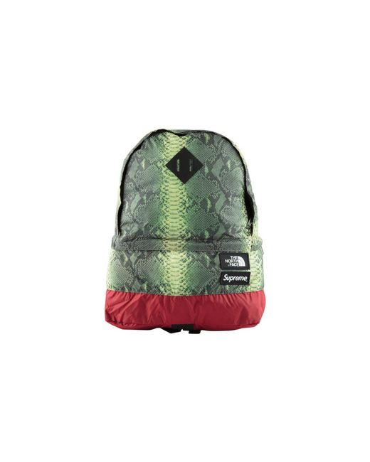 d34bcd98c Supreme Tnf Snakeskin Lightweight Day Jacket 'ss 18' in Green for ...