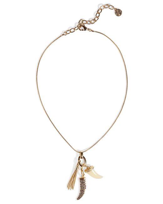 R.j. Graziano | Metallic Vergoldete Halskette Mit Haifischzahn | Lyst