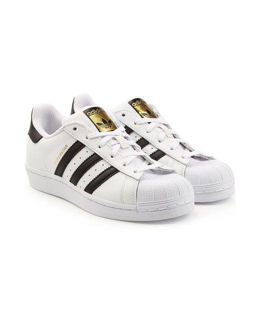 Adidas Originals - White 'superstar' Sneaker - Lyst