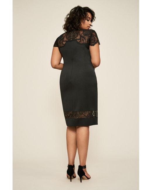 Corisande Short Sleeve Fringe Dress - Plus Size