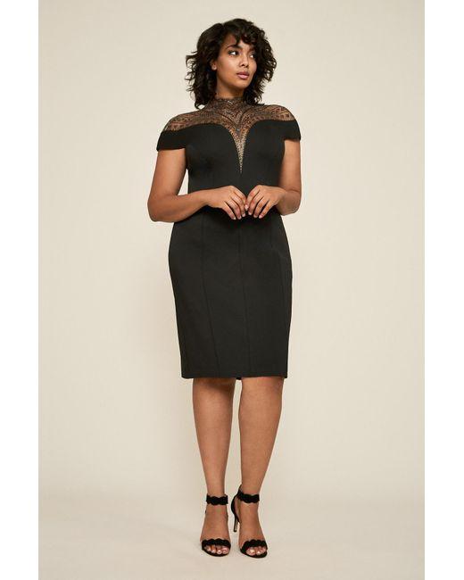 Lyst Tadashi Shoji Asher Neoprene Dress Plus Size In Black