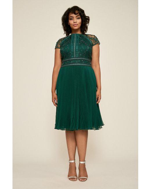Zivan Flared Lace Dress - Plus Size