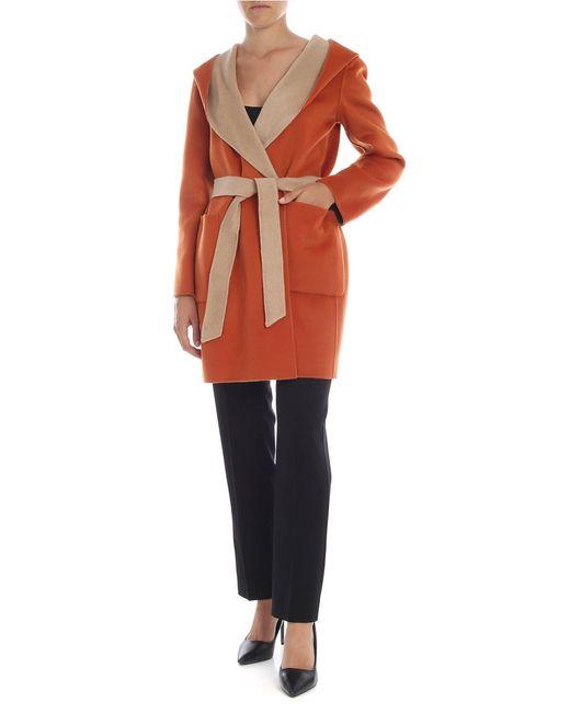 Max Mara Studio Natural Balia Coat In Beige And Orange