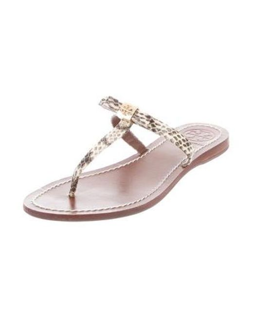 6cd532e3f ... Tory Burch - Multicolor Snakeskin Thong Sandals Animal Print - Lyst ...