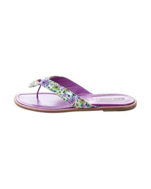 afe115a50169 Manolo Blahnik - Purple Floral Thong Sandals - Lyst ...