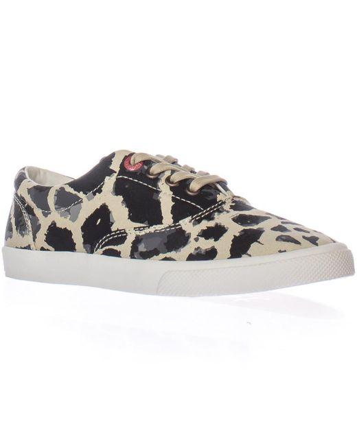 Bucketfeet | Natural Michael Saint Aubin Giraffe Lace-up Sneakers | Lyst