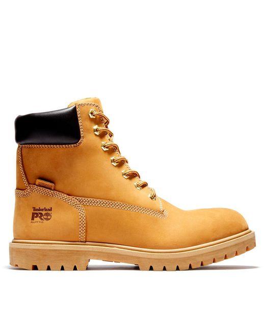 chaussure timberland hommes jaune