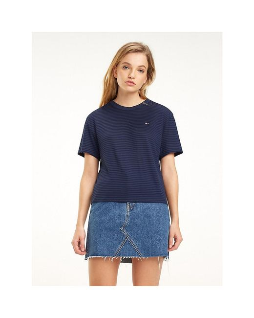 Tommy Hilfiger Blue Stripe Crew Neck T-shirt