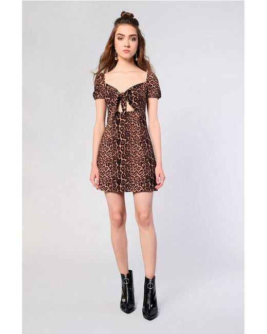 TOPSHOP - Brown Animal Printed Skater Dress By Glamorous Petite - Lyst