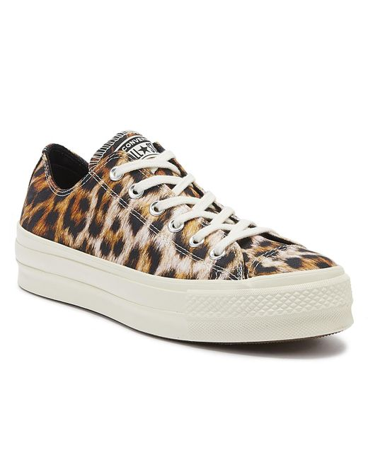 leopard converse womens shoes