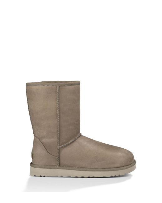 Ugg Classic Short Leather Laarzen in het Brown