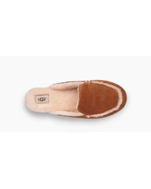 6509c51c6a Lyst - UGG Women s Lane Slip-on Loafer in Brown