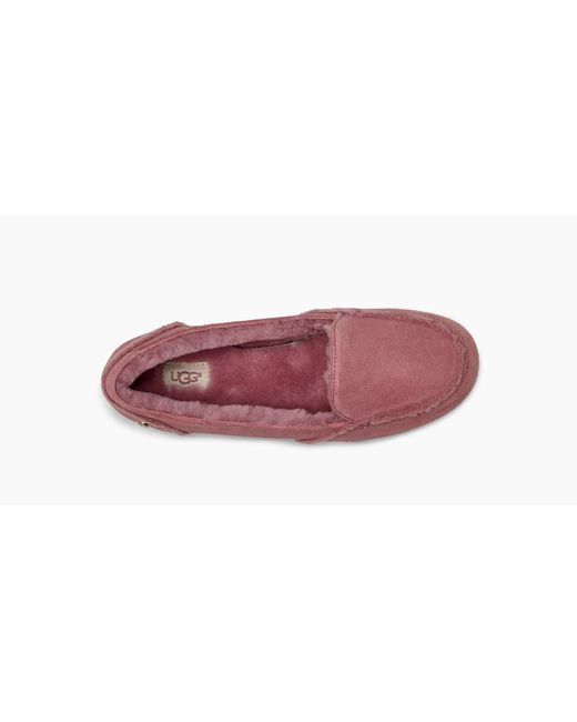 a01f419f37e ... Lyst Ugg - Pink Women s Hailey Loafer ...