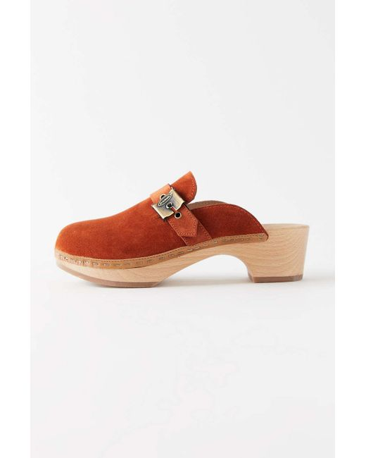 Dr. Scholls Multicolor Original Collection Sustainable Clog