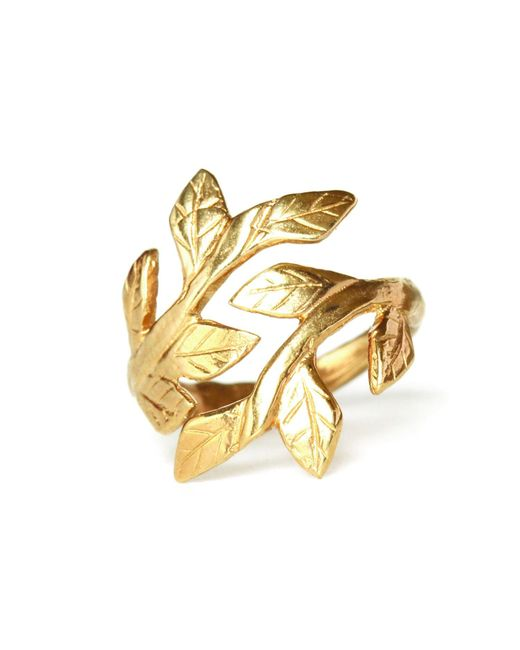 Chupi - Metallic Wrap Your Laurels Around Me Ring In Gold - Lyst