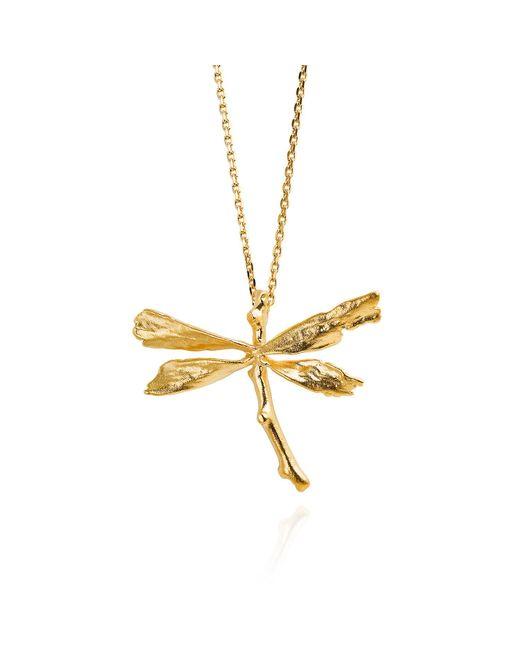 Catherine Zoraida   Metallic Dragonfly Necklace   Lyst