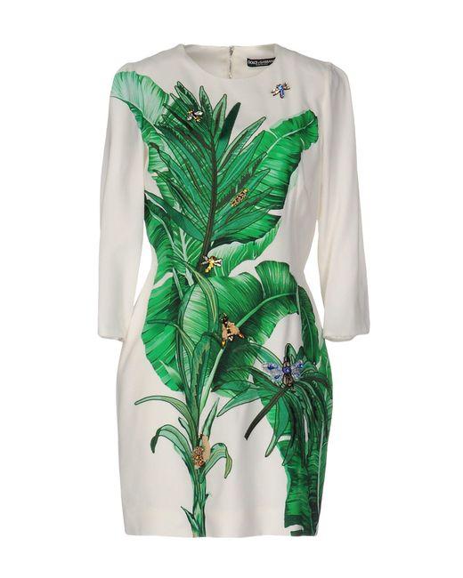 Minivestido Dolce & Gabbana de color Green