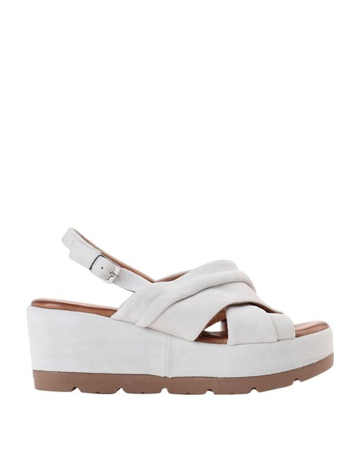 Sandales CafeNoir en coloris Gray