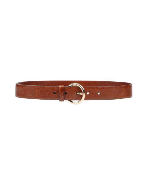 Nannini - Brown Belt - Lyst