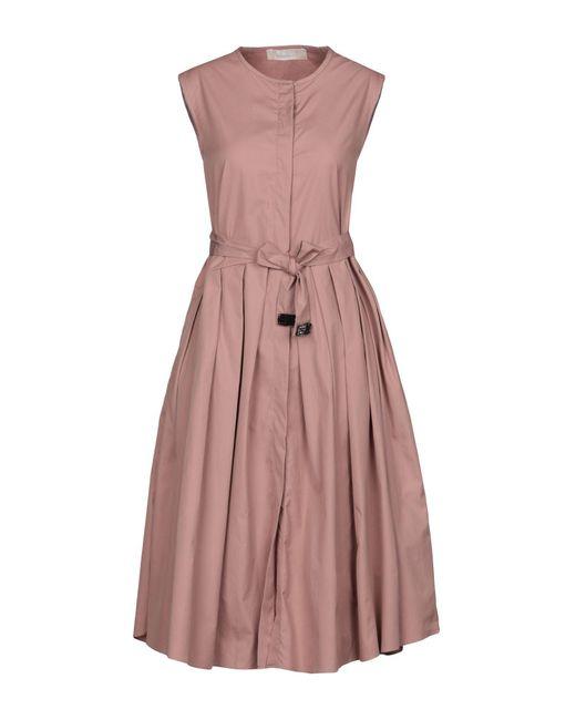 Robe aux genoux Max Mara en coloris Pink