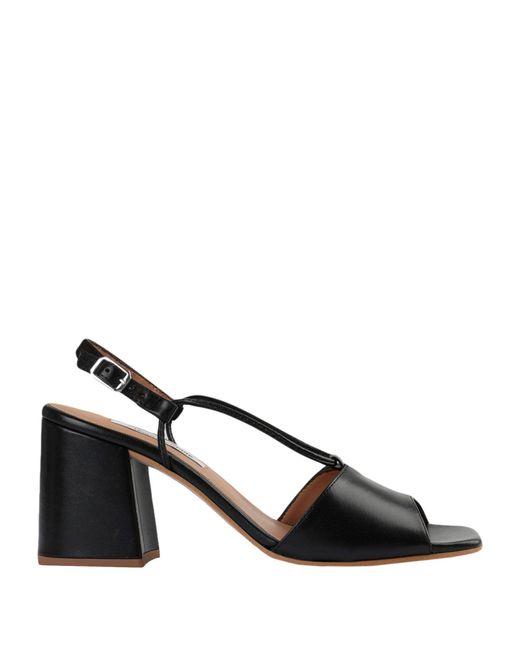 About Arianne Black Sandals