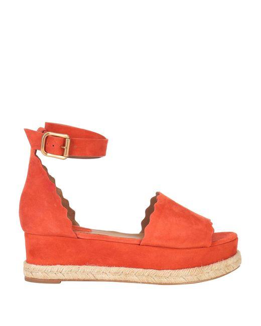 Chloé Orange Sandale