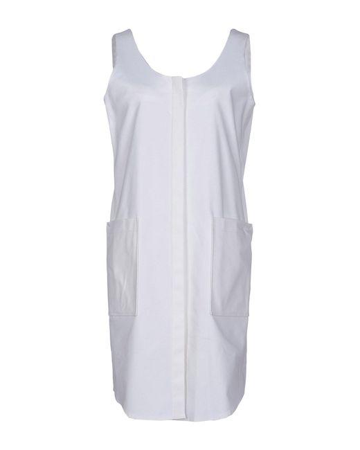 b7419116 Jil Sander Navy - White Short Dress - Lyst ...