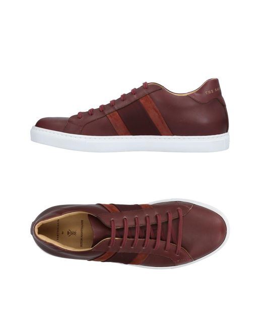 Sutor Mantellassi - Purple Low-tops & Sneakers for Men - Lyst