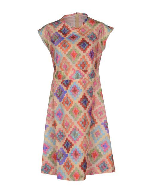 Hache | Natural Knee-length Dress | Lyst