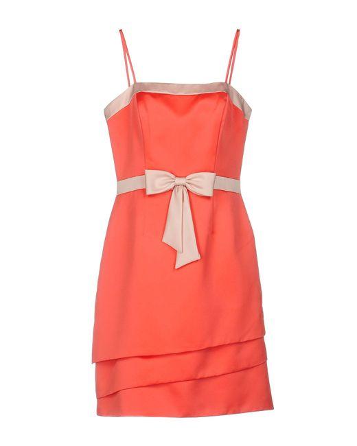 Jolie carlo pignatelli Knee-length Dress in Pink
