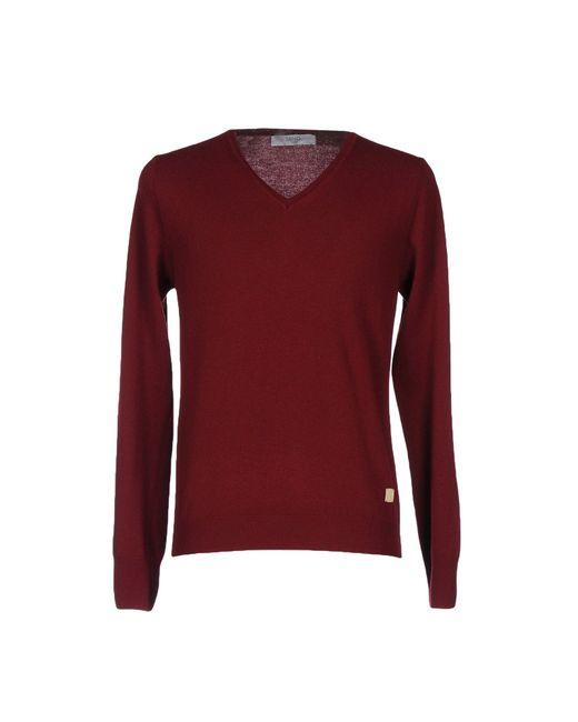 Liu Jo Brown Sweater for men