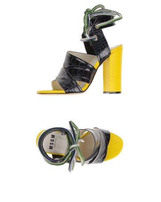 MSGM - Blue Sandals - Lyst