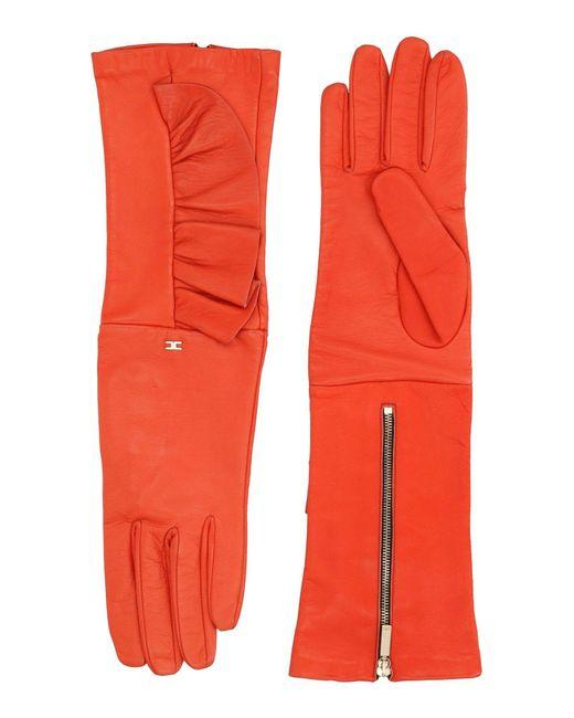 Elisabetta Franchi - Red Gloves - Lyst
